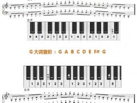 12个大调音阶及左右手指法图示