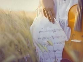 钢琴名曲100首---巴哈贝尔 卡农(乔治.温斯顿 改编)(094  )