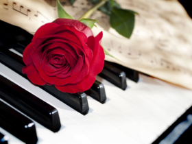 钢琴演奏会 No.5 演奏者(Donna Amato)